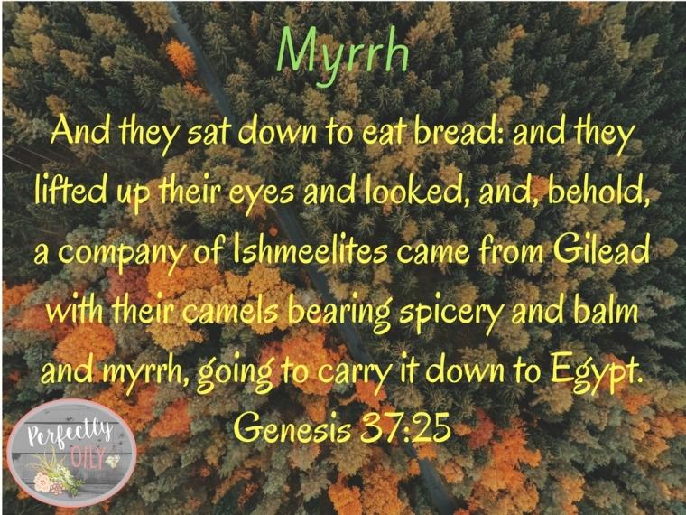 myrrh-jpg-slide-1