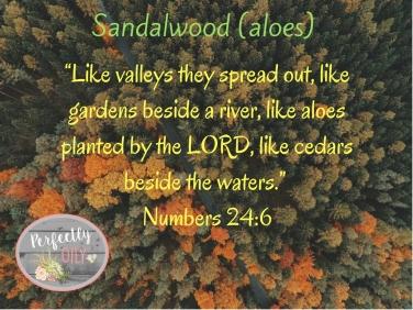 sandalwood-2