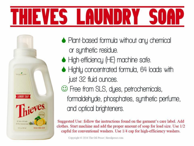 thieves laundry pic